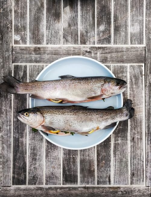 fiskeolie